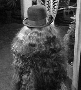 Cousin Itt, from the Addams Family