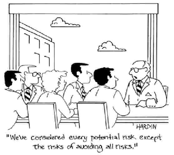 Cartoon on Risk